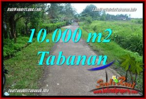 FOR SALE Magnificent PROPERTY 10,000 m2 LAND IN TABANAN TJTB354