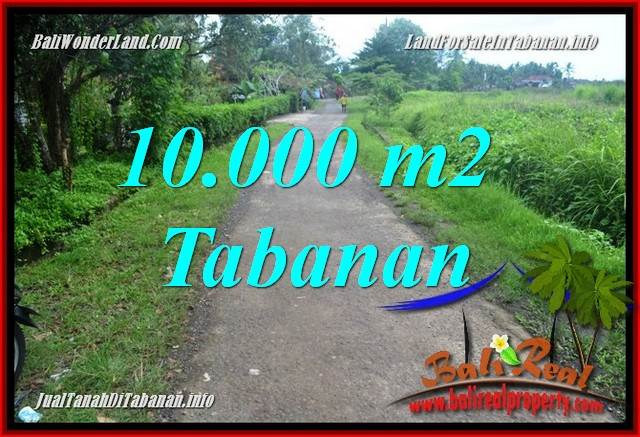 Beautiful 10,000 m2 LAND IN TABANAN FOR SALE TJTB354