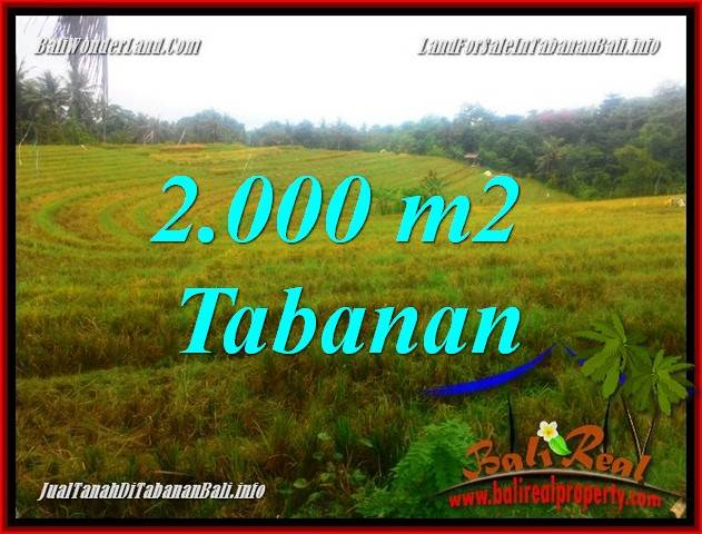 FOR SALE Affordable LAND IN TABANAN BALI TJTB356