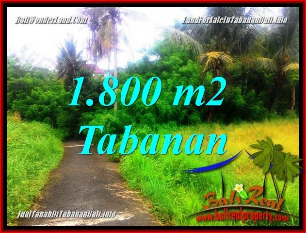 FOR SALE 1,850 m2 LAND IN TABANAN BALI TJTB357