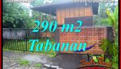 FOR SALE Exotic PROPERTY LAND IN TABANAN TJTB358