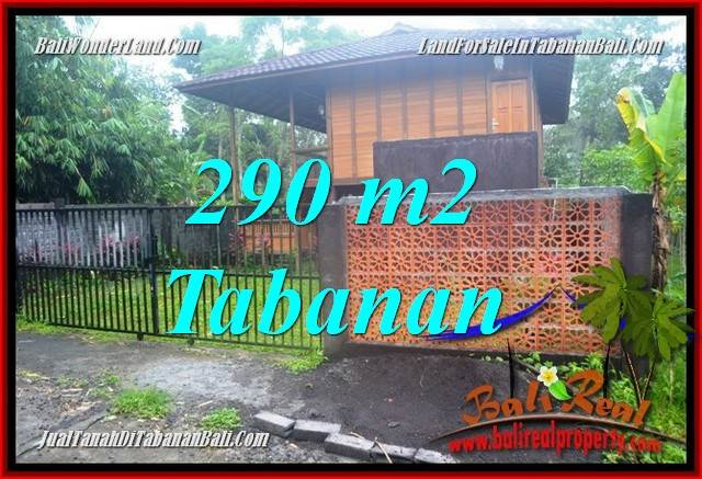 Affordable PROPERTY 290 m2 LAND FOR SALE IN TABANAN BALI TJTB358