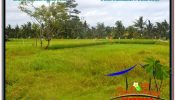 Beautiful 1,600 m2 LAND IN Sentral / Ubud Center FOR SALE TJUB633