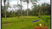 Beautiful 1,000 m2 LAND SALE IN UBUD BALI TJUB634