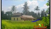 Affordable PROPERTY Sentral / Ubud Center 8,320 m2 LAND FOR SALE TJUB635