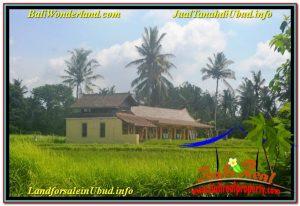 Affordable PROPERTY Sentral / Ubud Center 8,320 m2 LAND FOR SALE TJUB635