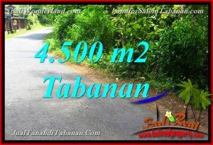 LAND IN TABANAN FOR SALE TJTB380