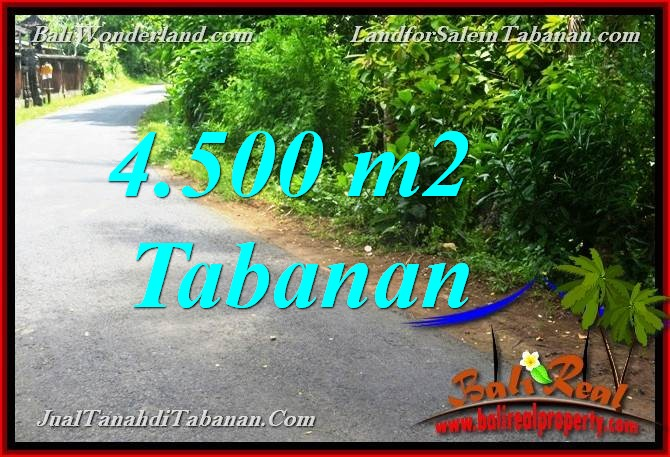 FOR SALE Beautiful 4,500 m2 LAND IN TABANAN TJTB380
