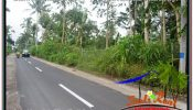 Exotic PROPERTY 5,800 m2 LAND SALE IN Ubud Tegalalang TJUB637