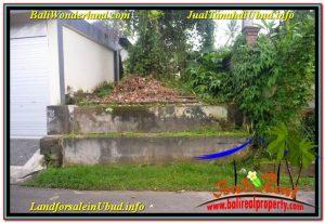 FOR SALE Magnificent PROPERTY 4,200 m2 LAND IN Sentral / Ubud Center TJUB639