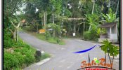 FOR SALE Magnificent PROPERTY 4,200 m2 LAND IN Sentral / Ubud Center TJUB639