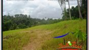 Beautiful PROPERTY 2,658 m2 LAND FOR SALE IN Sentral / Ubud Center BALI TJUB641