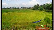 Affordable 5,569 m2 LAND IN UBUD BALI FOR SALE TJUB642