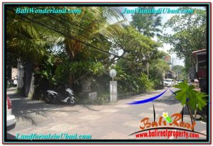 Sentral / Ubud Center BALI LAND FOR SALE TJUB644