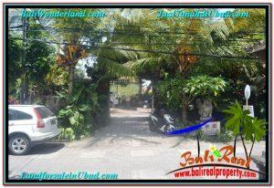 Sentral / Ubud Center BALI LAND FOR SALE TJUB644