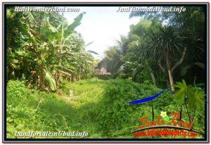 FOR SALE Exotic LAND IN Sentral / Ubud Center BALI TJUB646