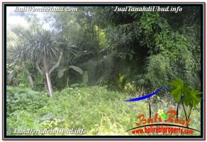 FOR SALE Exotic LAND IN Sentral / Ubud Center BALI TJUB646