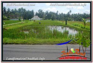 Beautiful LAND SALE IN UBUD TJUB647