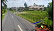 Beautiful LAND SALE IN UBUD TJUB647