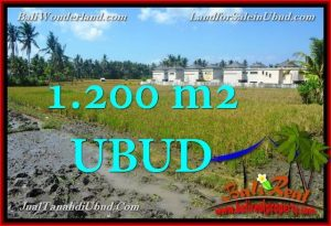 Affordable 1,200 m2 LAND IN UBUD BALI FOR SALE TJUB663