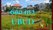 Exotic Sentral Ubud BALI LAND FOR SALE TJUB664