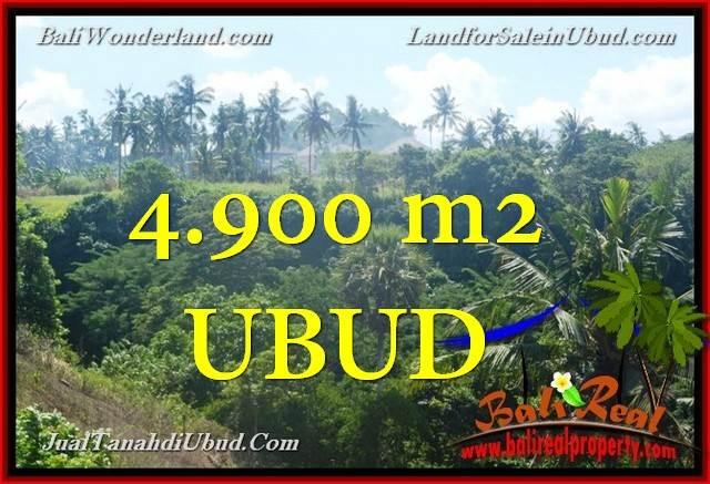Beautiful PROPERTY 4,900 m2 LAND SALE IN UBUD BALI TJUB665