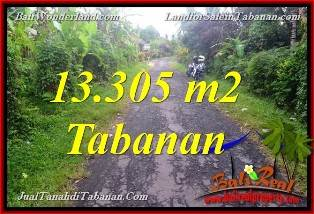 FOR SALE Affordable PROPERTY 13,305 m2 LAND IN TABANAN BALI TJTB367