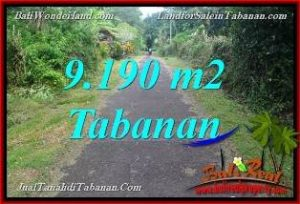 FOR SALE Beautiful PROPERTY 9,190 m2 LAND IN Tabanan Selemadeg Timur BALI TJTB368