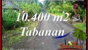 Exotic PROPERTY 10,400 m2 LAND SALE IN TABANAN TJTB369