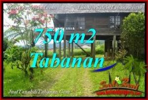 FOR SALE Beautiful PROPERTY 750 m2 LAND IN Tabanan Bedugul BALI TJTB370