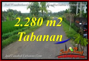 FOR SALE Magnificent PROPERTY 2,280 m2 LAND IN TABANAN TJTB374