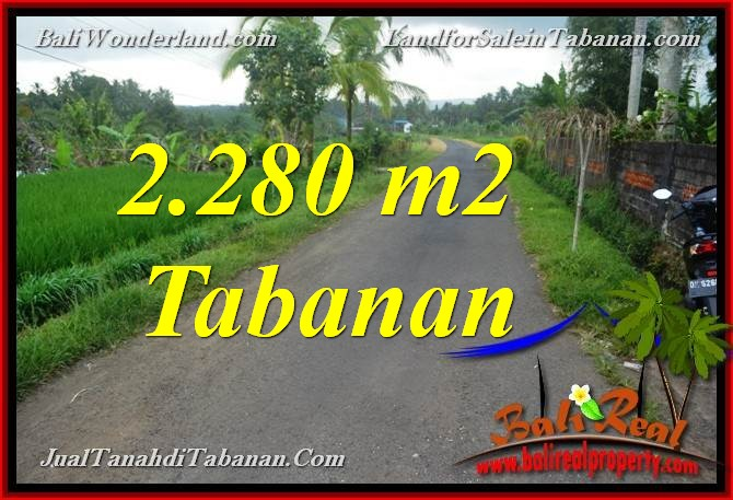 Magnificent 2,280 m2 LAND IN TABANAN FOR SALE TJTB374