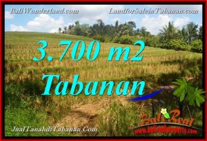 Affordable Tabanan Selemadeg BALI 3,700 m2 LAND FOR SALE TJTB377
