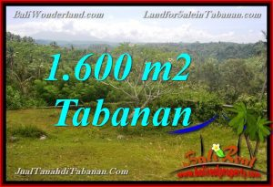 Magnificent PROPERTY LAND FOR SALE IN TABANAN BALI TJTB378