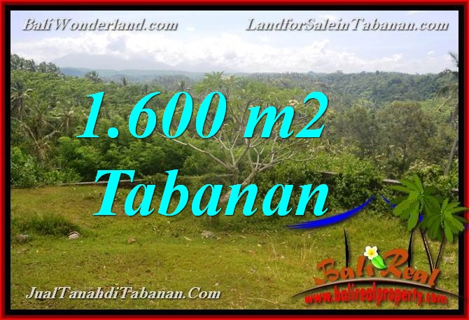 Exotic PROPERTY 1,600 m2 LAND FOR SALE IN Tabanan Selemadeg BALI TJTB378