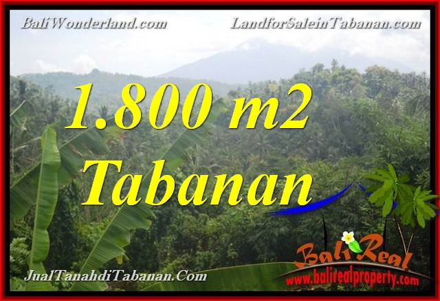 Magnificent PROPERTY 1,800 m2 LAND IN TABANAN BALI FOR SALE TJTB379