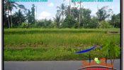 Beautiful LAND SALE IN UBUD TJUB649