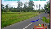 Beautiful LAND SALE IN UBUD TJUB649