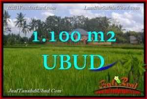 Exotic PROPERTY 1,100 m2 LAND FOR SALE IN Ubud Pejeng TJUB651