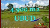 Beautiful Ubud Pejeng BALI LAND FOR SALE TJUB652