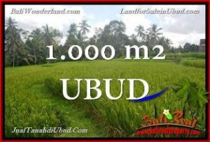 Magnificent PROPERTY 1,000 m2 LAND IN Ubud Tegalalang FOR SALE TJUB653