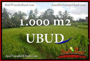 Beautiful 1,000 m2 LAND SALE IN UBUD TEGALALANG BALI TJUB653