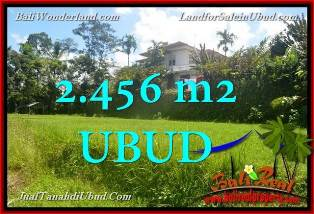 Magnificent Ubud Tegalalang BALI 2,456 m2 LAND FOR SALE TJUB654