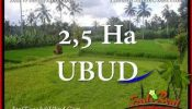 Beautiful PROPERTY Ubud Payangan 25,000 m2 LAND FOR SALE TJUB655
