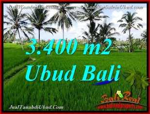 Magnificent PROPERTY 3,400 m2 LAND IN UBUD BALI FOR SALE TJUB656