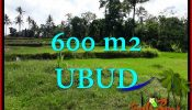 Ubud Pejeng BALI LAND FOR SALE TJUB657