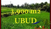 Beautiful PROPERTY LAND FOR SALE IN UBUD TJUB658