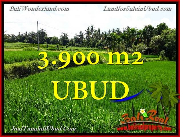 Exotic PROPERTY LAND IN UBUD BALI FOR SALE TJUB658