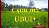 Affordable UBUD 3,500 m2 LAND FOR SALE TJUB660