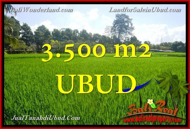 FOR SALE 3,500 m2 LAND IN UBUD BALI TJUB660